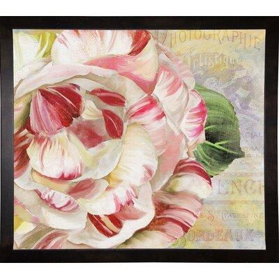 'Camellias II' Graphic Art Print Format: Cafe Espresso Framed