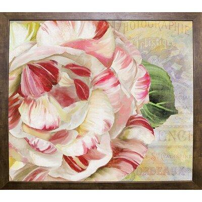 'Camellias II' Graphic Art Print Format: Cafe Mocha Framed