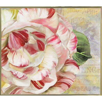 'Camellias II' Graphic Art Print Format: Metal Gold Framed