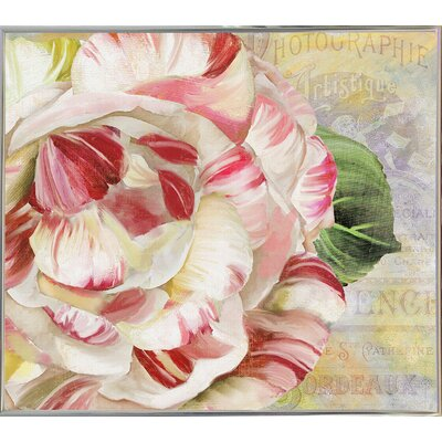 'Camellias II' Graphic Art Print Format: Metal Silver Framed