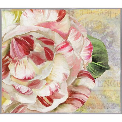 'Camellias II' Graphic Art Print Format: Metal White Framed