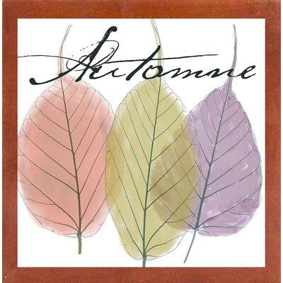 'Seasons II' Graphic Art Print Format: Canadian Walnut Medium Framed