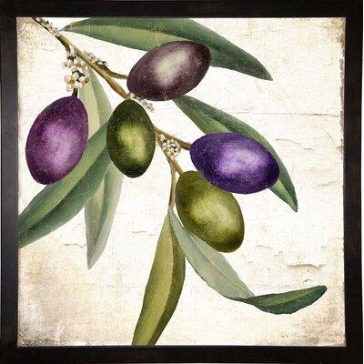'Olive Branch I' Graphic Art Print Format: Cafe Espresso Framed