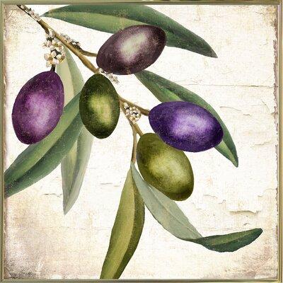 'Olive Branch I' Graphic Art Print Format: Metal Gold Framed