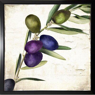 'Olive Branch III' Print Format: Plastic Black Framed