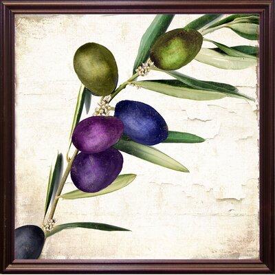 'Olive Branch III' Print Format: Cherry Grande Framed
