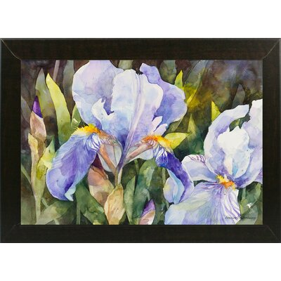 'Purple Iris Closeup' Framed Graphic Art Print Format: Brazilian Walnut Medium Framed