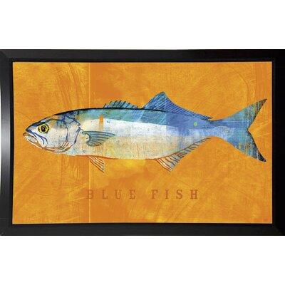 'Bluefish' Graphic Art Print Format: Budget Saver Framed Paper, Size: 12