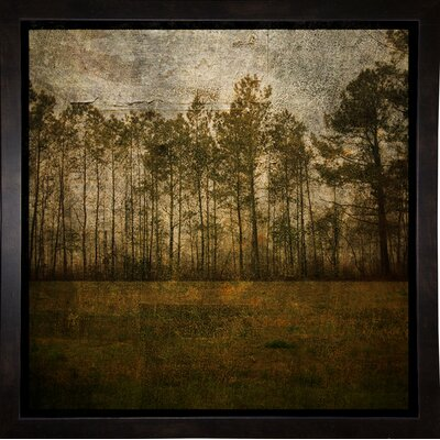 'A Line of Pines' Graphic Art Print Format: Affordable Black Medium Framed Paper, Size: 15.75