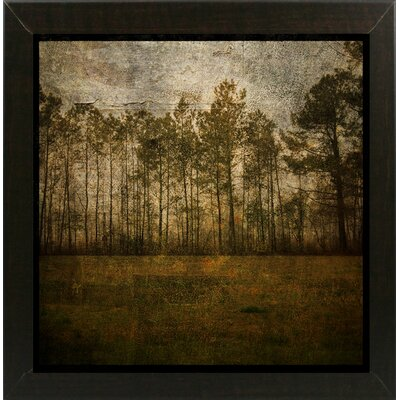 'A Line of Pines' Graphic Art Print Format: Affordable Brazilian Walnut Medium Framed Paper, Size: 15.75