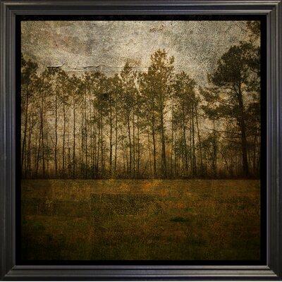 'A Line of Pines' Graphic Art Print Format: Black Grande Framed Paper, Size: 15.75