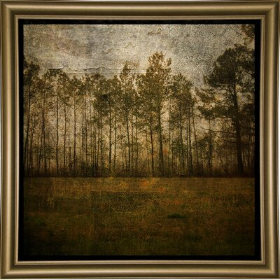 'A Line of Pines' Graphic Art Print Format: Bistro Gold Framed Paper, Size: 15.75