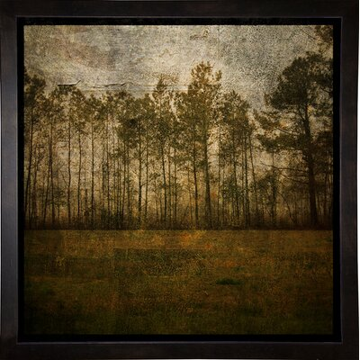 'A Line of Pines' Graphic Art Print Format: Cafe Espresso Framed Paper, Size: 15.75