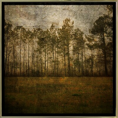 'A Line of Pines' Graphic Art Print Format: Gold Metal Framed Paper, Size: 15.75