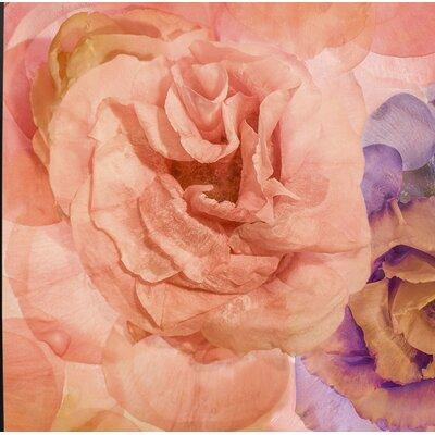'Rosa Cuadrada' Graphic Art Print Format: Canvas Black Floater Frame, Size: 18.7