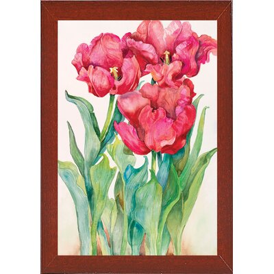 'Cherry Red Tulip' Print Format: Red Mahogany Wood Medium Framed Paper