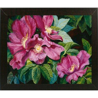 'Wild Red Roses' Print Format: Brazilian Walnut Wood Medium Framed Paper