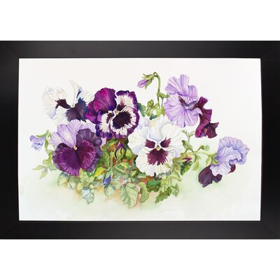 'White and Purple Pansies II' Print Format: Black Wood Large Framed Paper