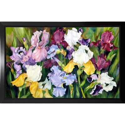 'Multi Colored Field Of Iris' Print Format: Black Plastic Framed Paper