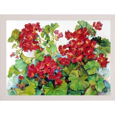 'Deep Red Geraniums' Print Format: White Wood Medium Framed Paper