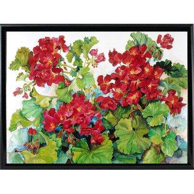 'Deep Red Geraniums' Print Format: Black Metal Framed Paper