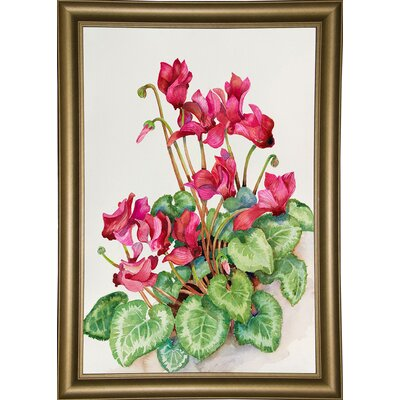 'Red Cyclamen' Print Format: Bistro Gold Framed Paper