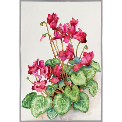 'Red Cyclamen' Print Format: White Metal Framed Paper