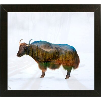 'Yak' Graphic Art Print Format: Affordable Brazilian Walnut Medium Framed Paper, Size: 17.75