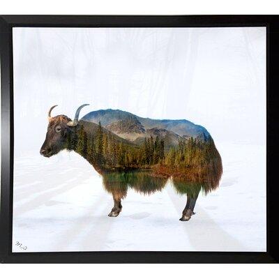 'Yak' Graphic Art Print Format: Budget Saver Framed Paper, Size: 17.75