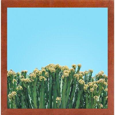 'Colli' Framed Graphic Art Print Format: Canadian Walnut Medium Framed Paper, Size: 17.25