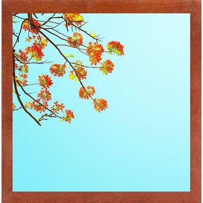 'Color Pops 2' Graphic Art Print Format: Canadian Walnut Medium Framed Paper, Size: 17.25