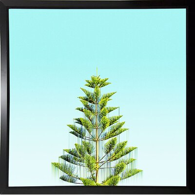 'Branch Out' Graphic Art Print Format: Budget Saver Framed Paper, Size: 9.25