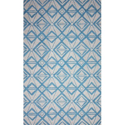 Novel Imture Hand-Hooked Light Blue Outdoor Area Rug Rug Size: 76 x 96