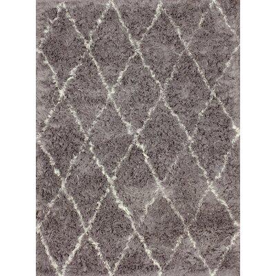 Moderna Grey Moroccan Shag Area Rug Rug Size: 5 x 7
