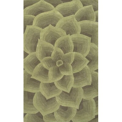 Moderna Hand-Tufted Green Area Rug Rug Size: Rectangle 5 x 8