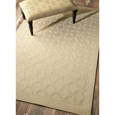 Natura Solid Brown Area Rug Rug Size: Rectangle 5 x 8