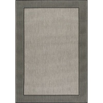 Dawn Gray Chreine Indoor/Outdoor Rug Rug Size: Rectangle 76 x 109