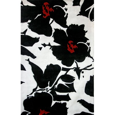 Cine Floral Symphony Black Rug Rug Size: Rectangle 76 x 96