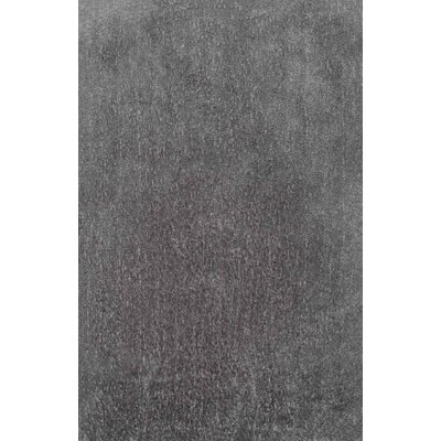 Albali Gray Area Rug Rug Size: Rectangle 76 x 96