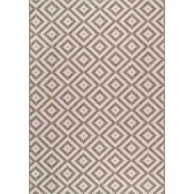 Ellzey Beige/Brown Area Rug Rug Size: 53 x 76