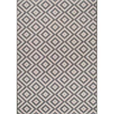 Ellman Gray/Beige Area Rug Rug Size: 76 x 109