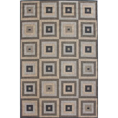 Villa Haler Brown Indoor/Outdoor Area Rug Rug Size: Rectangle 9 x 12