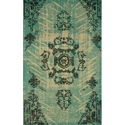 Natural Kolor Hand-Woven Turquoise Area Rug Rug Size: Rectangle 5 x 8