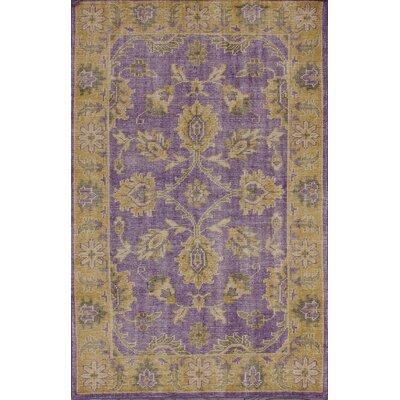 Overdye Purple Salsa Area Rug Rug Size: 8 x 10