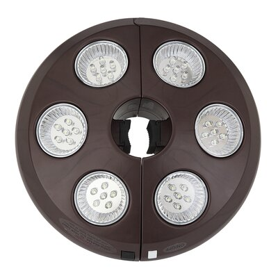 Image of Augustus Rechargeable Umbrella Light