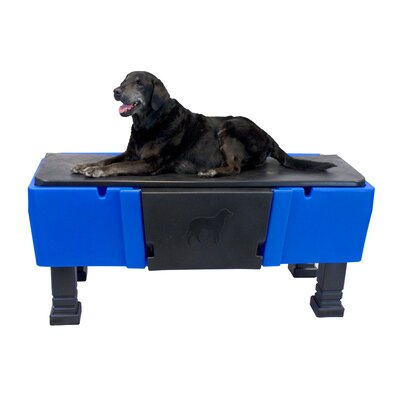 Groom-Pro Pet Tub Grooming Station Color: Blue