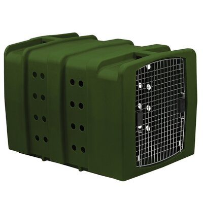 Kennebec Yard Kennel Color: Olive