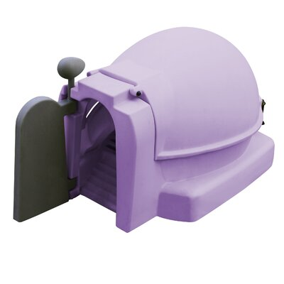 Chicken Coop with Nesting Box and Roosting Bar Color: Lavender