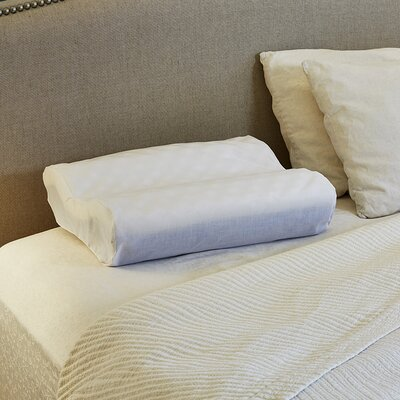 Contour Foam Standard Pillow Cover Color: White