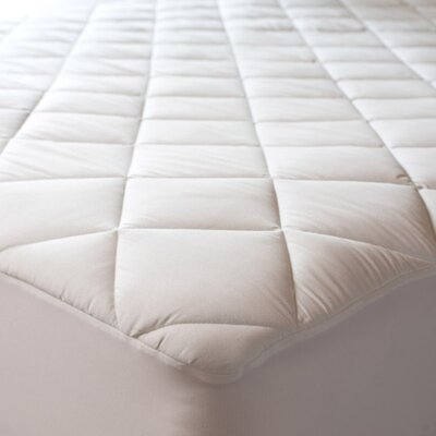 Egyptian 1 Polyester Mattress Pad Size: Queen